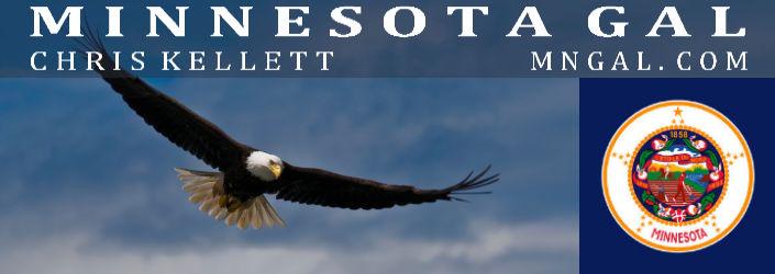 Eagle Flying Chris Kellett MN